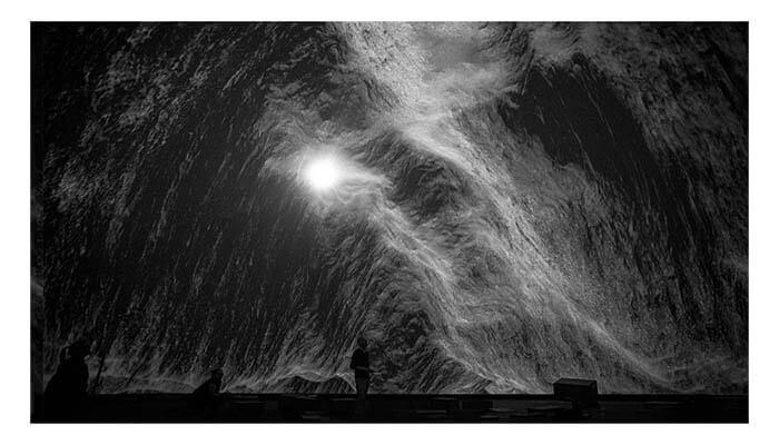 carla chan Black Moves - Agora Digital Art