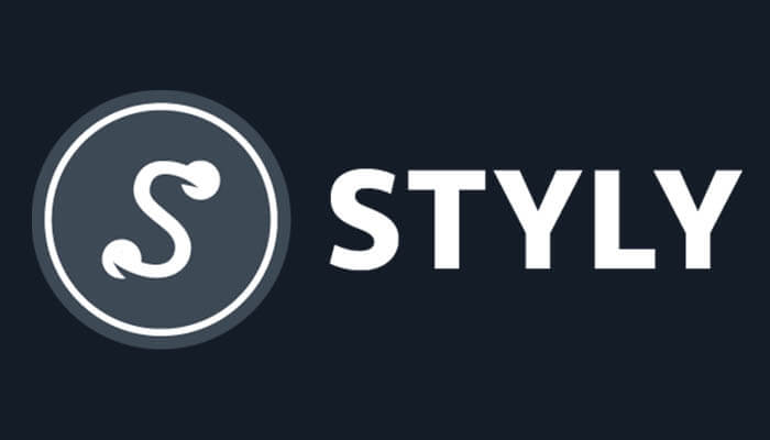 styly logo to do all AR MR and VR is a partner of Agora Digital Art